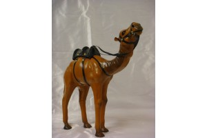 Camello piel 12-4