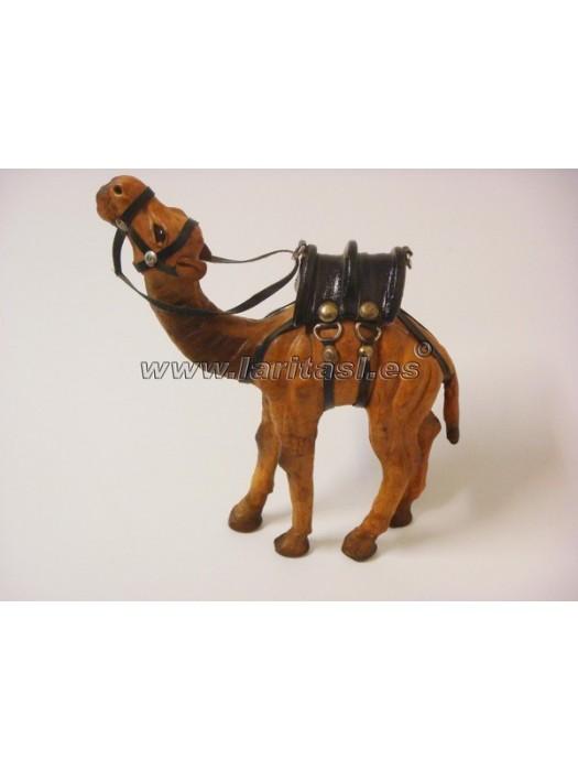 Camello Piel 6-4